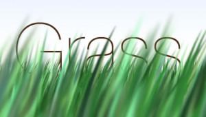 grassimage_web